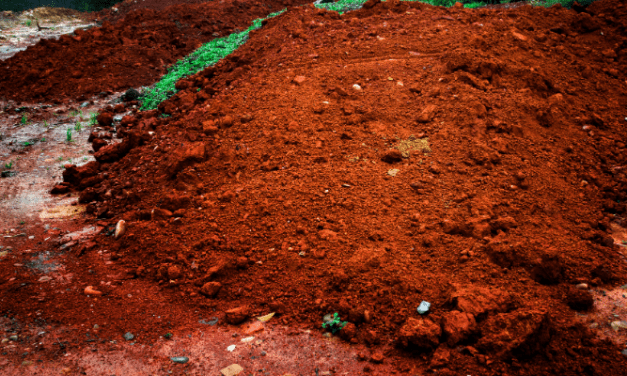 Is Red Clay Soil Good For Vegetables?