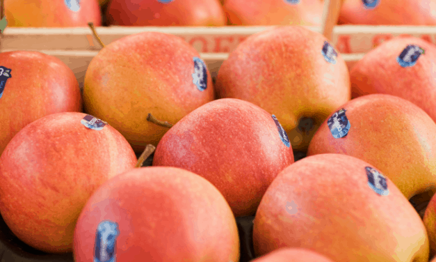Are The Stickers On Fruit Compostable?