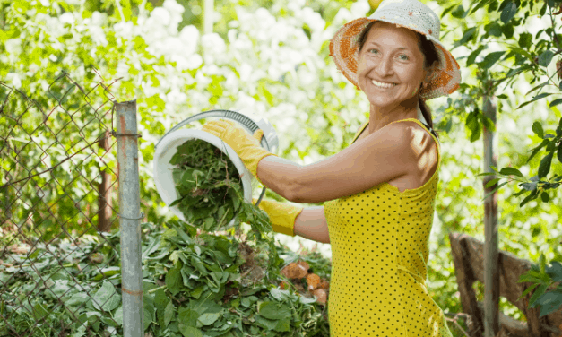 Should Compost Be Kept In The Sun?