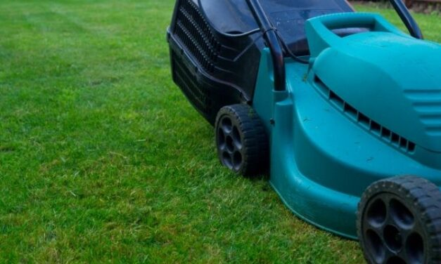 Do Electric Lawn Mowers Use A Lot Of Electricity? (Explained)