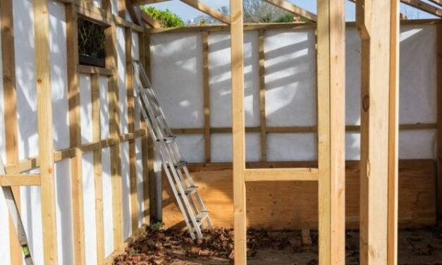 Is It Cheaper To Buy Or Build A Shed? (All You Need To Know)