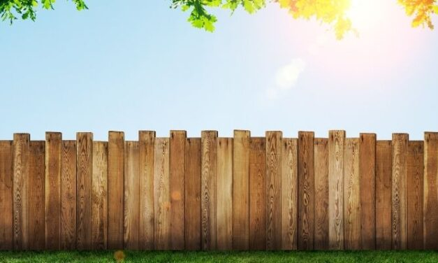 Will Soil Rot My Fence? (And How To Slow It)